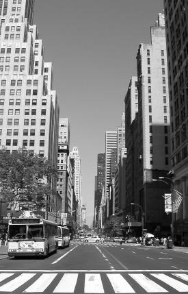 images/main/fifth_ave.jpg