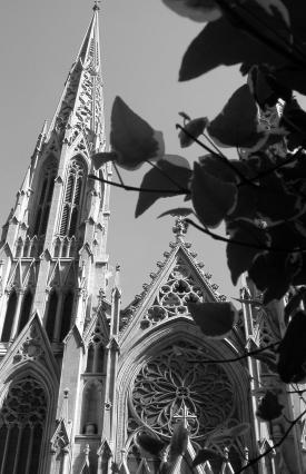 images/main/st_patricks_cathedral.jpg